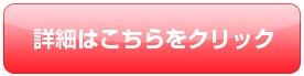 red-shousai.jpg